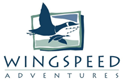 Wing Speed Adventures